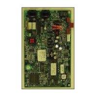 FIKE-10-2528 DACT Module