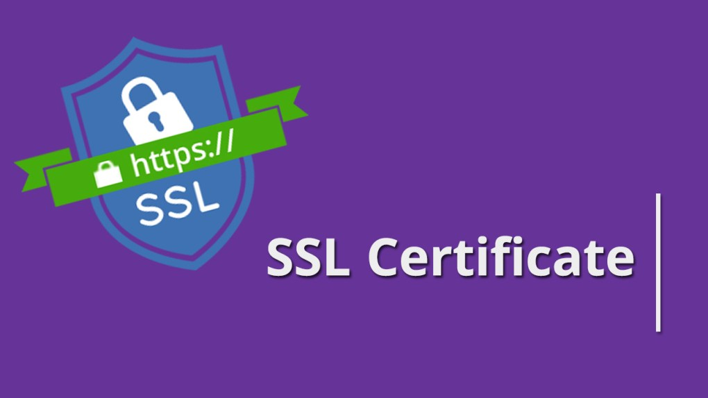 Certificatul de securizare a site-ului – ce trebuie să știi despre acesta StoreDay România Tutoriale