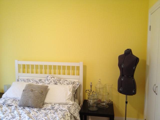 guest room paint colour