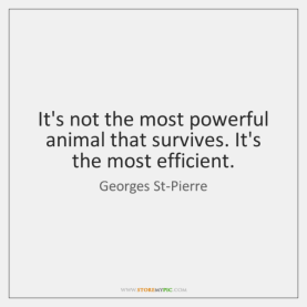Image result for George st. pierre quote powerful animal