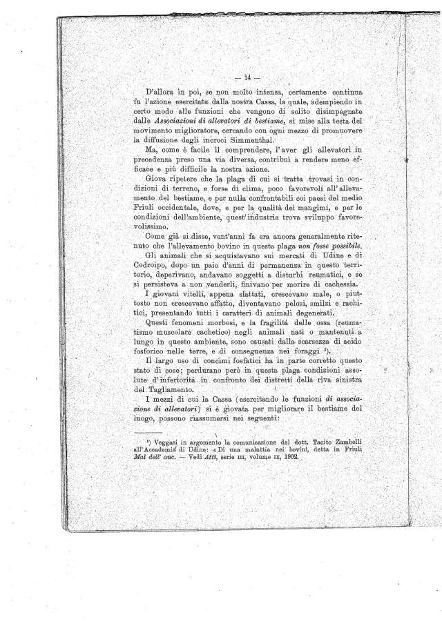 Documento (13)0001