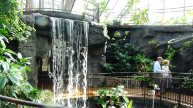Una foresta tropicale dentro un museo al MUSE di Trento  StoriEnogastronomicheit