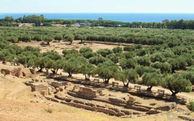 Roccelletta of Scylletium in Calabria