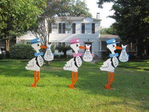 Triplet Storks
