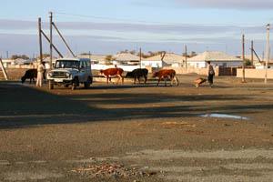 Aral_Sea_11