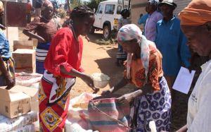 2012-12-africa-vogler-620-741