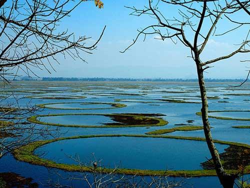 Loktak-Lake-manipur4