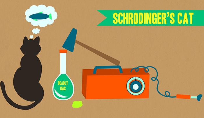 schrodinger-theory