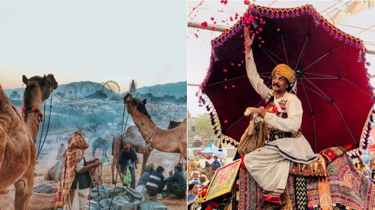 These 20 Photos From Rajasthan S Vibrant Pushkar Mela Are