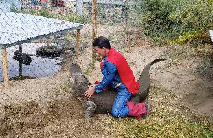 https://i0.wp.com/www.storytrender.com/wp-content/uploads/2017/09/6_CATERS_SUPERMAN_GATOR_EGG_EXTRACTION_07.jpg?resize=736%2C479