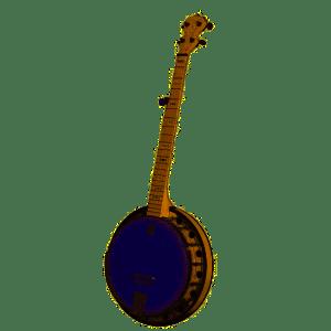 DEERING GOODTIME 2 Resonator 5 String Banjo