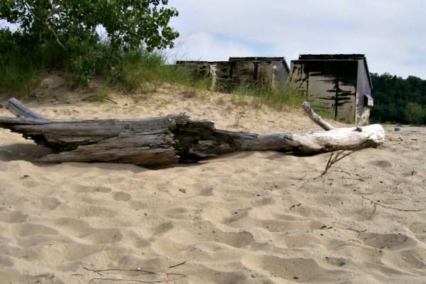 weathered wood-Warren Dunes-Michigan-StowandTellU