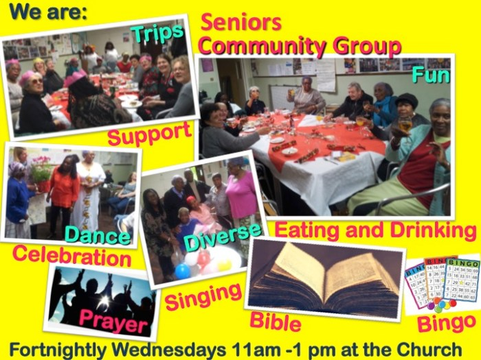 Seniors Community Group