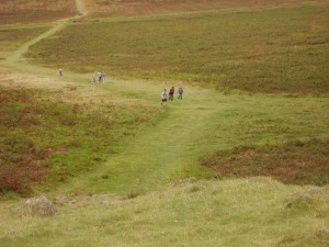 Photo: Playing in Bradgate Park