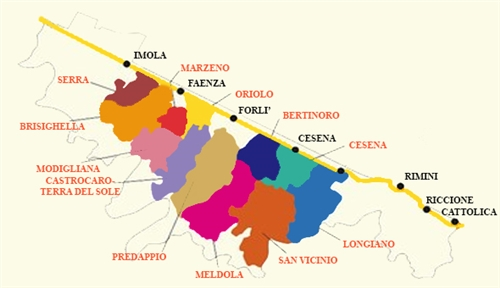 Viaggio nel Sangiovesenel cuore della Romagna
