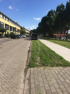 De grasstrook in Almere (straightfrom.nl)