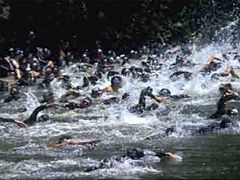 The joys of competitive open water swimming