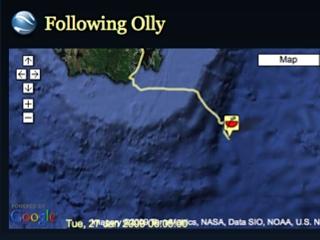 Following Olly