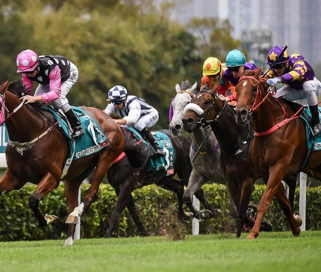 The Gambler Who Cracked The Horse Racing Code In Hong Kong Asia
