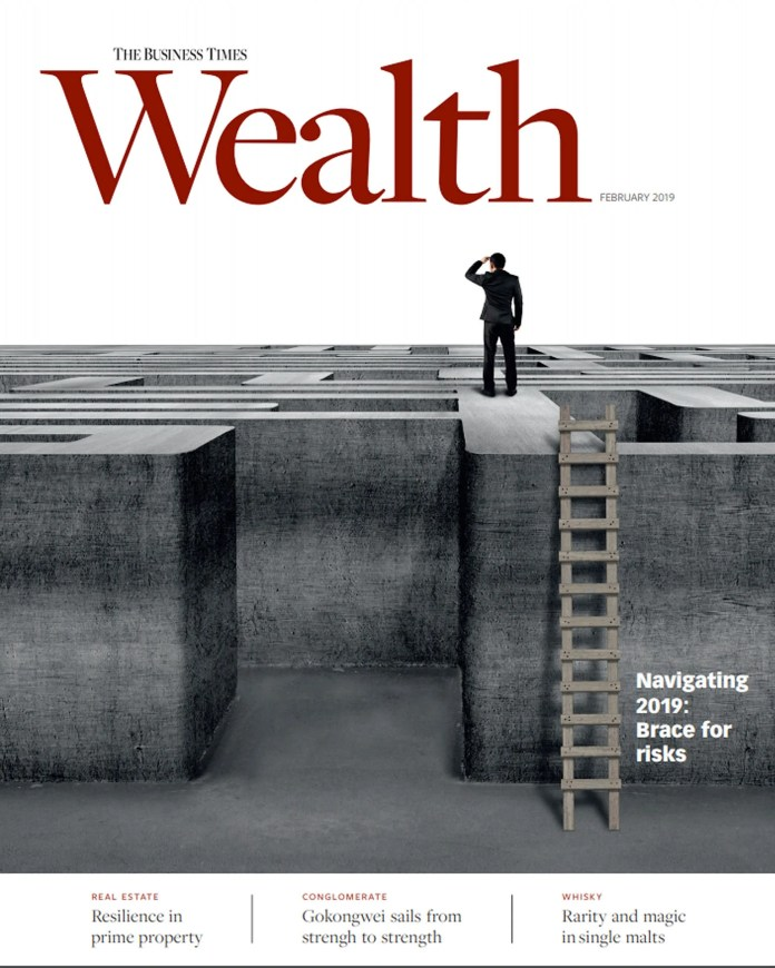 Wealth magazine's first edition for this year proffers a cogent view of asset markets at a time when volatility threatens to keep investors on the sidelines.