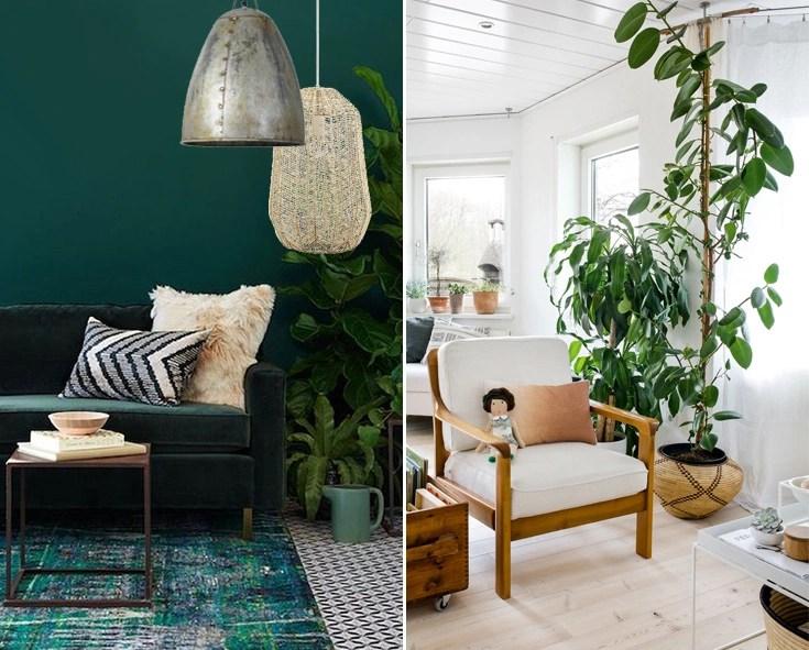 De beste lampen in het botanische interieur  Straluma