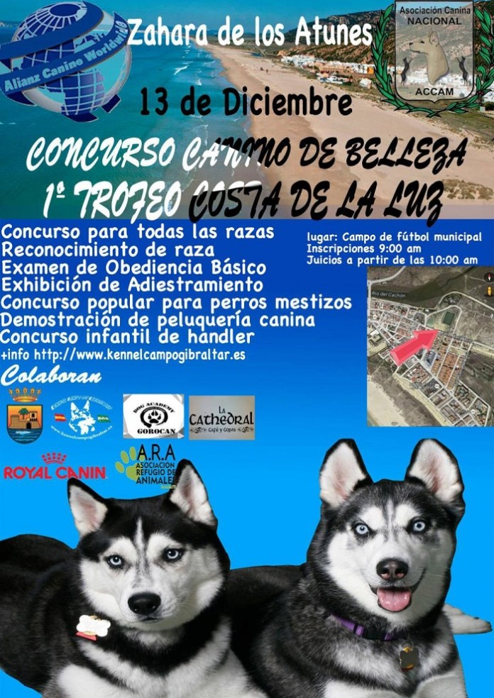 Concurso Perros Zahara groß