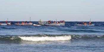 """""""Die Almadraba"""" - Der Thunfischfang an der Costa de la Luz"""