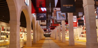 Toro galeria
