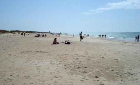 Wasser Strand