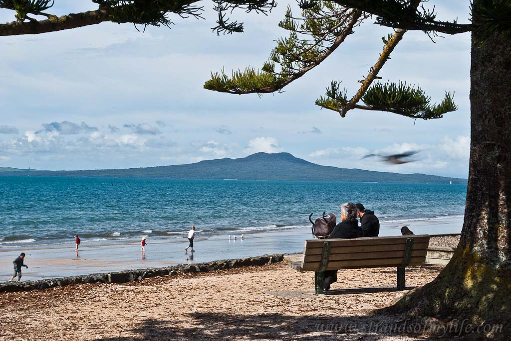 Mairangi Bay beach