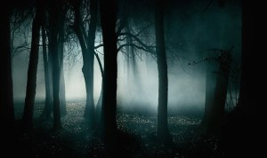 Dark Forest - Folklore