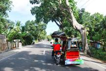 Najbolj pogost promet na cestah - tricikli