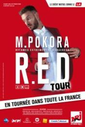 M-POKORA-R-E-D-Tour-2015-en-VIP-au-Zenith-Europe-de-Strasbourg-le-samedi-11-avril-2015-271-0a-1414399310