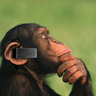 Bluetooth monkey