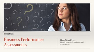 Maximizing the Value of Business Performance Assessments Series