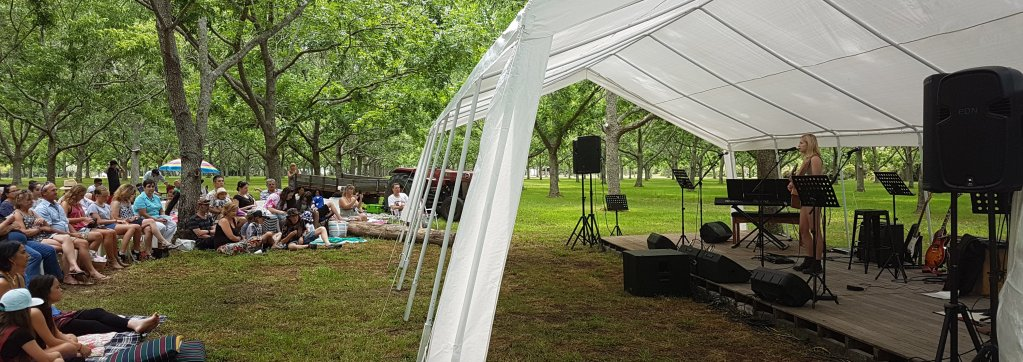 Music tuition can lead you to amazing places. Stratford Music concert in the orchard drew a crowd of 350 people.