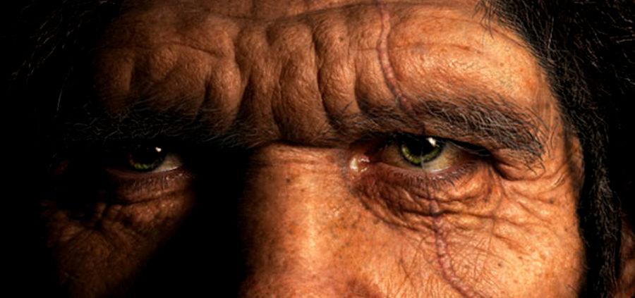Χρονολόγιο της ανθρώπινης εξέλιξης