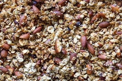 Fig, Almond & Hazelnut Granola