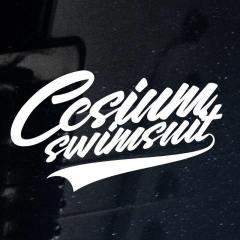 Cesium Swimsuit