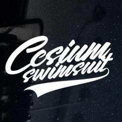 Cesium Swimsuit - Cover