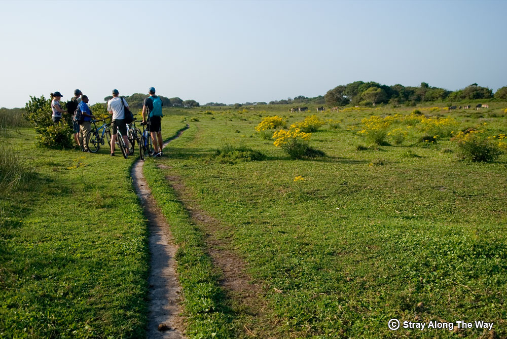 The iPhiva Trail in the iSimangaliso Wetland Park