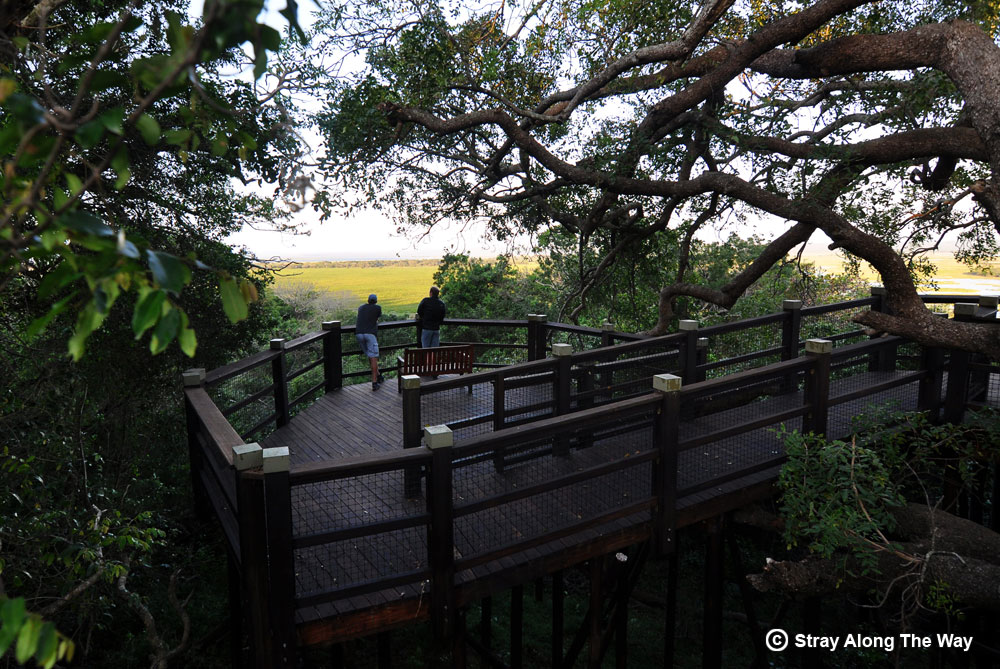 The uMthoma Aerial Boarwalk