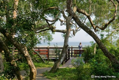 Viewing deck overlooking the Eastern Shores Section of the iSimangaliso Wetland Park.
