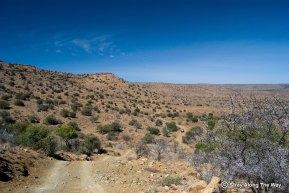 Mountain Zebra National Park Landscape