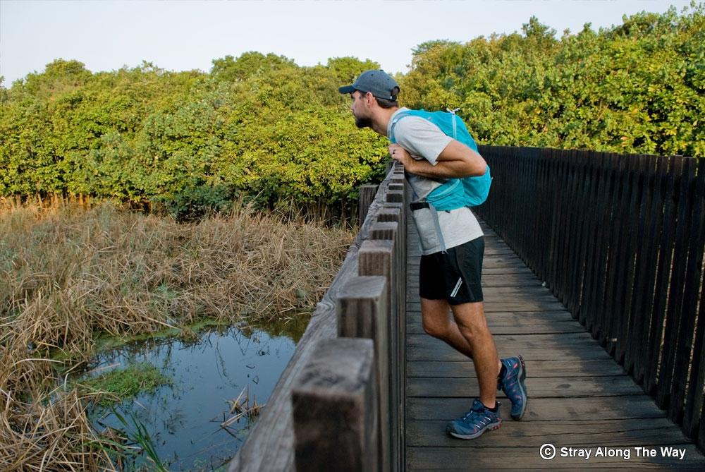 Crossing the walk-bridge over the Siyaya River.