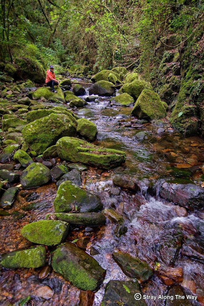jill in the river on the fanie botha trail