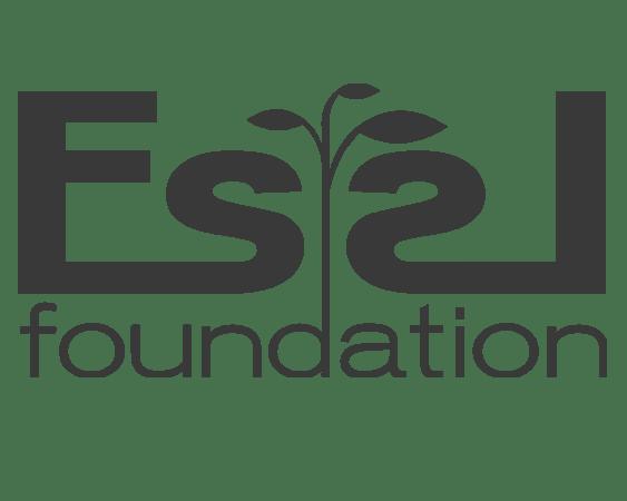 Essl Foundation_V2