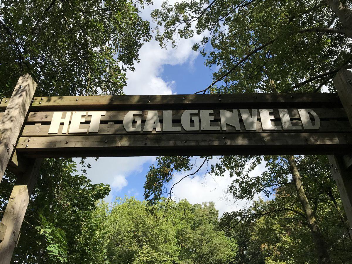 Openlucht koffieconcert in het Galgenveld