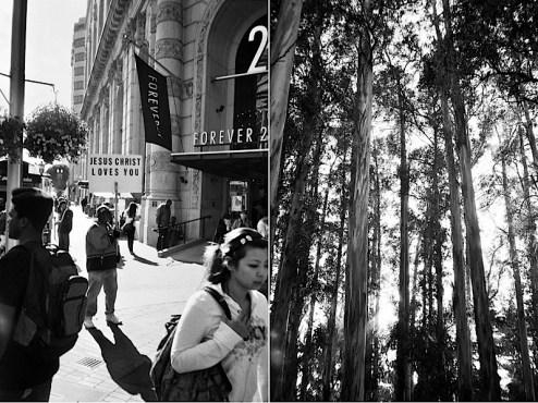 street_and_woods.jpg