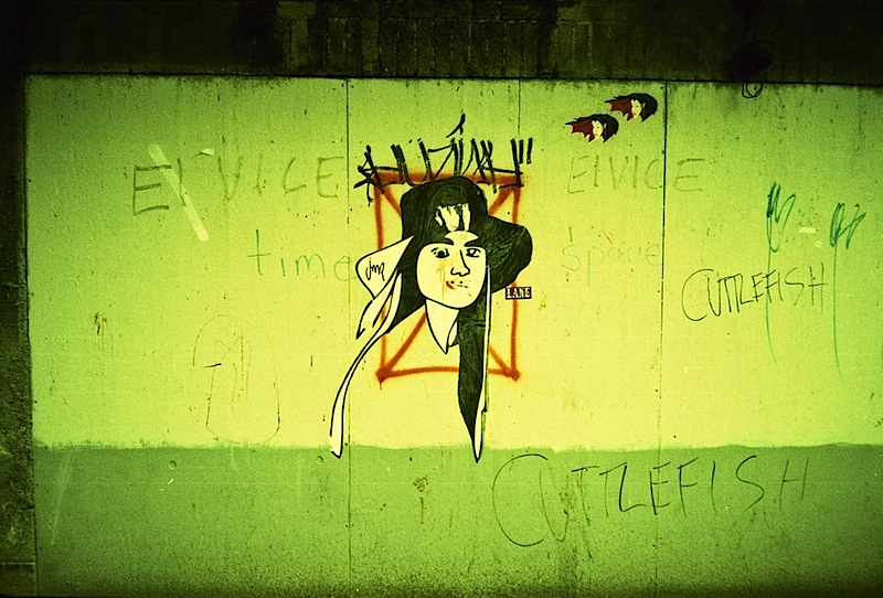 elvice_cuttlefish_street_art.jpg